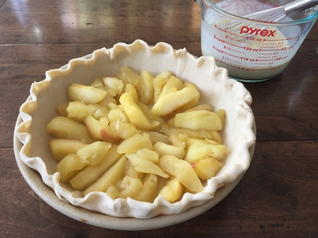 Apples placed in the bottom of a pie plate lined with pastry.