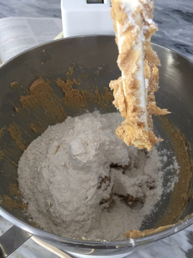 Flour and creamed butter and sugar mixture in standing mixer.