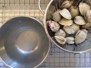 Scrubbed and rinsed clams draining in the colander